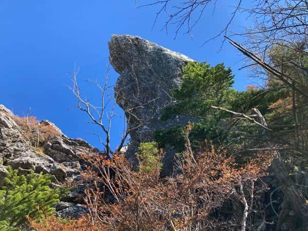 剣山の鶴石を見上げる!